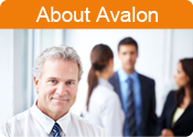 About Avalon Management